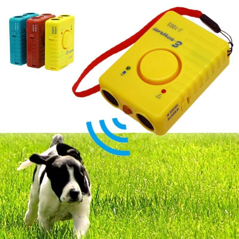 Действие ультразвука на собаку: какие звуки раздражают животных на самом деле
