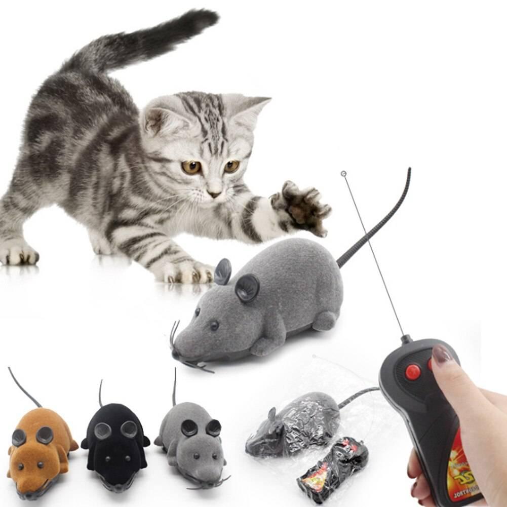 Игрушки для кошек (59 фото): лучшие интерактивные и интеллектуальные игры для котов, электронные мышки и неваляшки для котят, круг с шариком и игрушки с лакомством внутри
