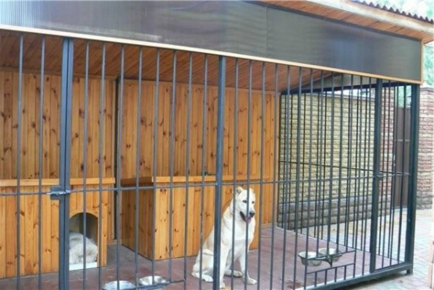 Вольер для собаки своими руками - пошаговая инструкция с чертежами, размерами, фото и видео