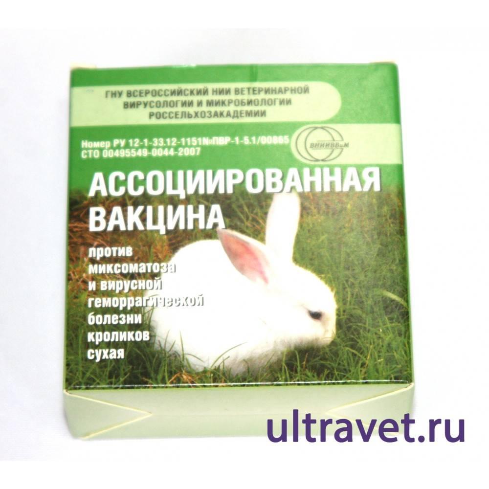 Вакцина для кроликов от миксоматоза и вгбк: инструкция