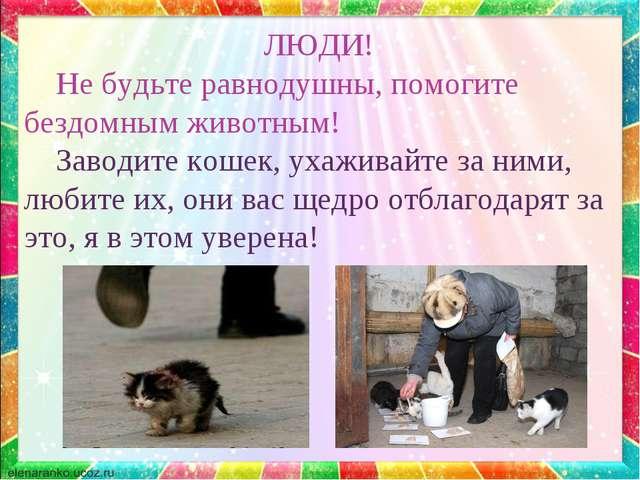 6 способов как помочь бездомным собакам, не подбирая всех домой - gafki.ru