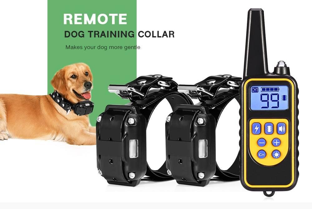 Может ли электроошейник навредить питомцу? помогает ли электронный ошейник в воспитании собаки?
