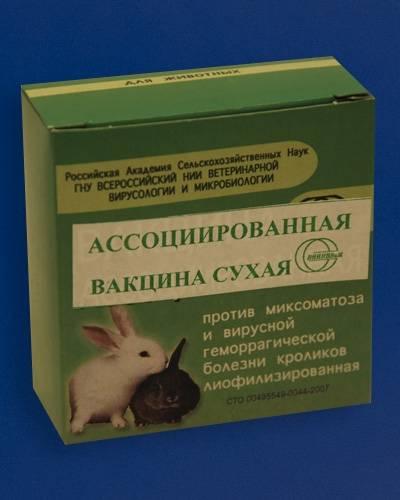 Прививки для кроликов: какие и когда делать — правила вакцинации