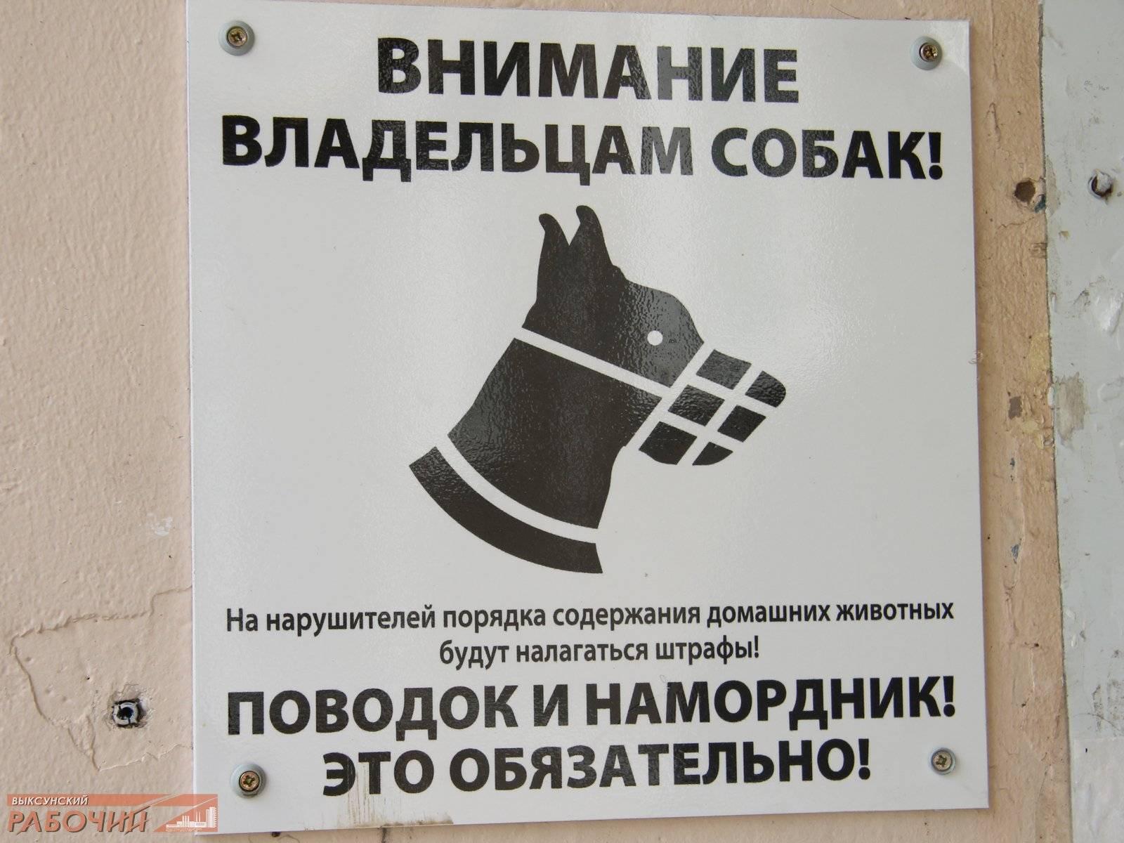 Список собак, запрещенных к выгулу без намордника и поводка