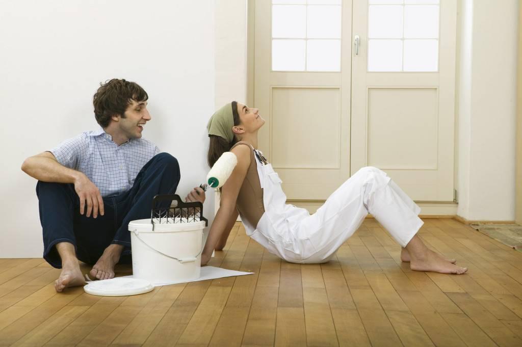 Как сохранить ремонт в квартире, если у домашних животных свое понятие о комфорте - квартира, дом, дача - медиаплатформа миртесен