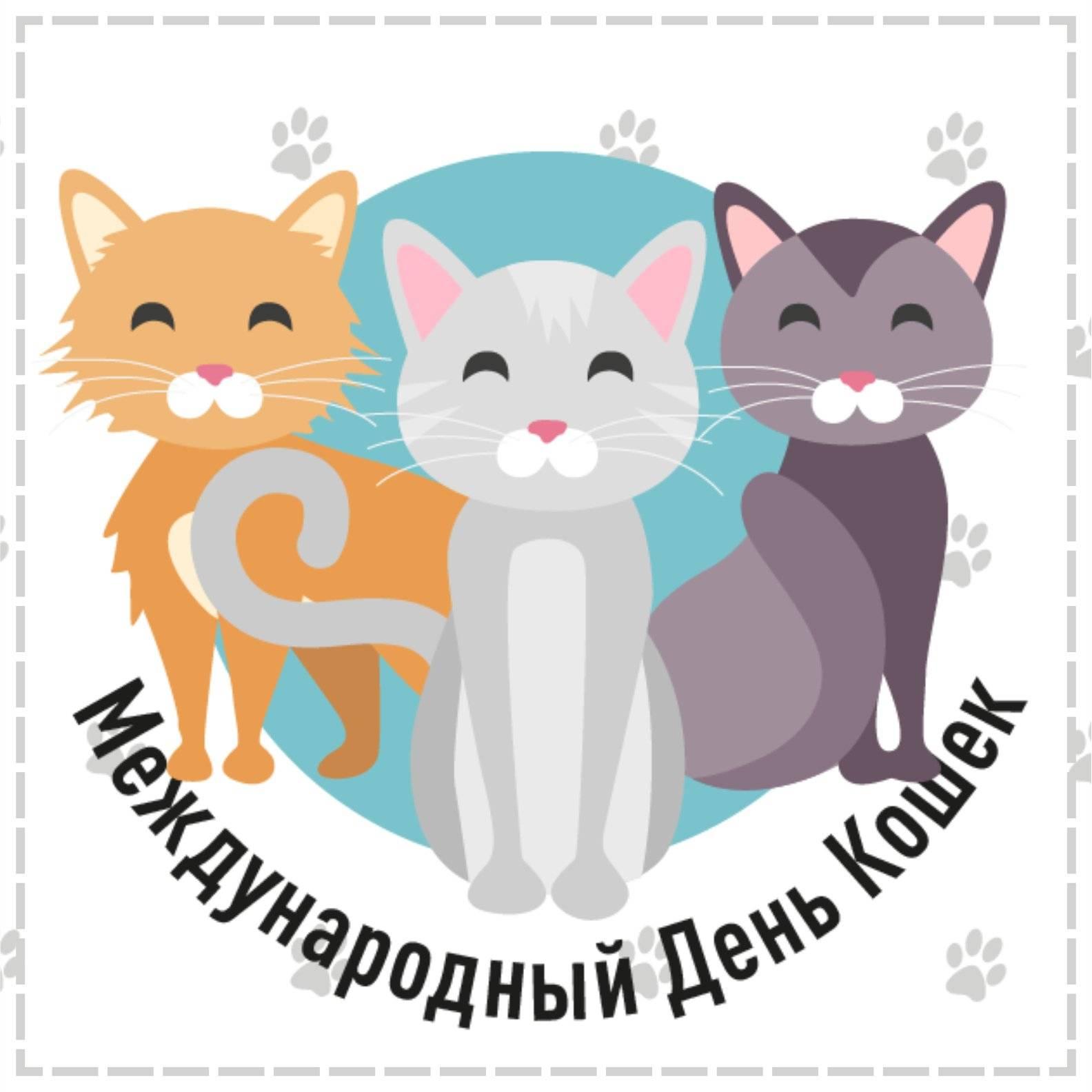 Праздничный день у котов: когда отмечают всемирные международные дни кошек