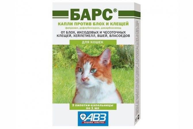 Барс форте для кошек и собак: инструкция по применению капель от блох и клещей