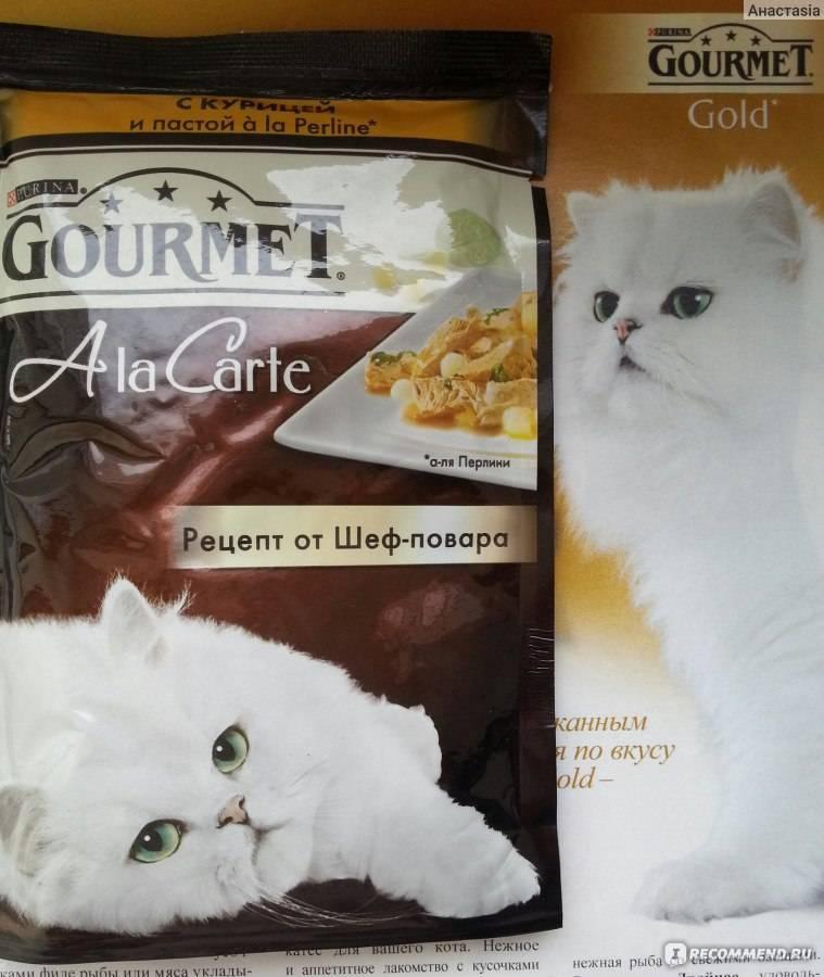 Корм для кошек гурме: отзывы ветеринаров, состав и обзор корма