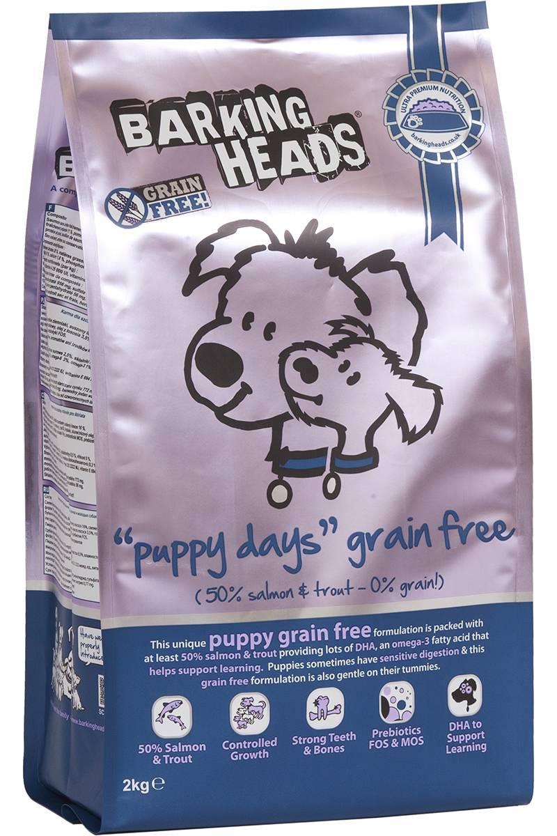 Консервы для собак: выбираем лучший корм