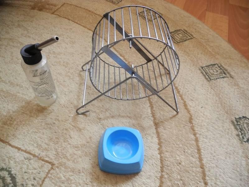 Колесо для хомяка: виды конструкций, как сделать самостоятельно и нюансы выбора