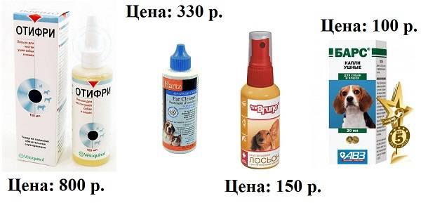 Как чистить уши собаке - как часто, перекисью водорода, хлоргексидином