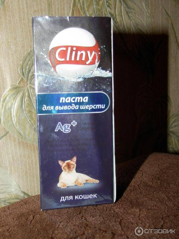 Трихобезоары в желудке: что делать, когда кот блюет шерстью