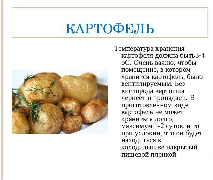 Почему собакам нельзя картошку
