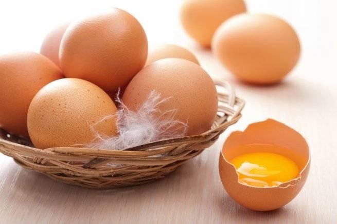 ᐉ можно ли крысе яйцо вареное и сырое (белок и желток) - zoopalitra-spb.ru